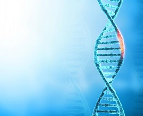a representation of a dna strand to symbolize addiction genetics
